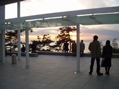 MOMA_Hayama016.jpg